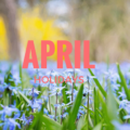 April Holidays Real Estate Agents Can Promote