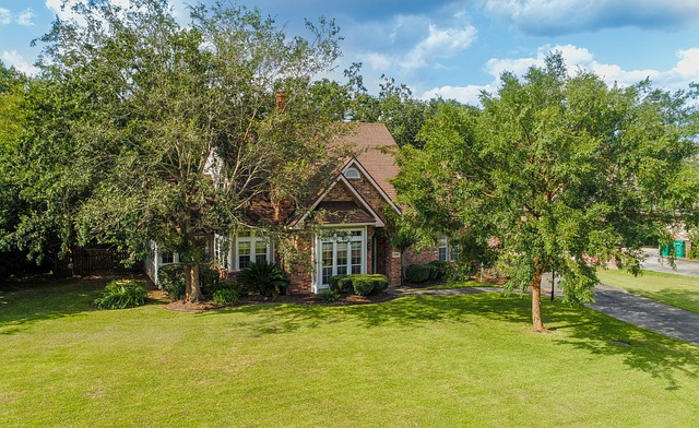 Aerial pictures taken by a drone of a house. Big yard surrounded by tall trees