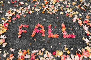 Fall Marketing Tips for Real Estate Agents